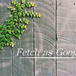 Fetch as Googleを使って素早くインデックスする方法